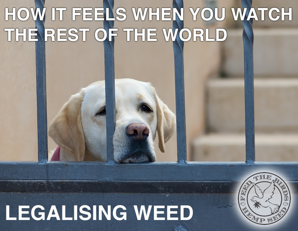 How it feels when you watch the rest of the world legalising weed.