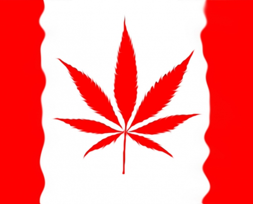 Canadian flag with cannabis leaf.