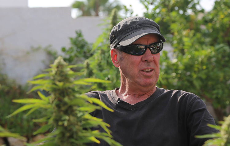 Cannabis activist Jeff Ditchfield