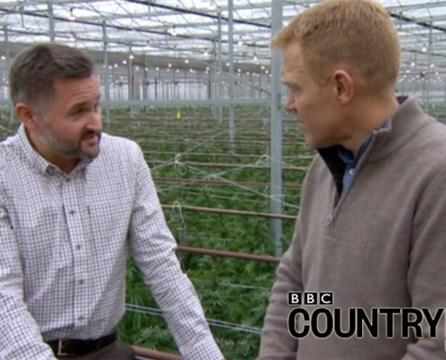 Adam Henson meets Chris Corby at British Sugar's cannabis farm.