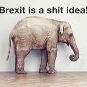 Elephant in the room: Brexit is a shit idea!