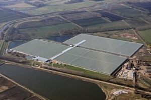 Arial photo of British Sugar's cannabis greenhouse in Norfolk.