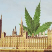Houses of Parliament with weed leaf