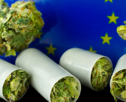 Cannabis buds and the EU flag.