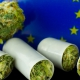 Cannabis buds and the EU flag.