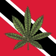 Flag of Trinidad and Tobago with a cannabis leaf on it.