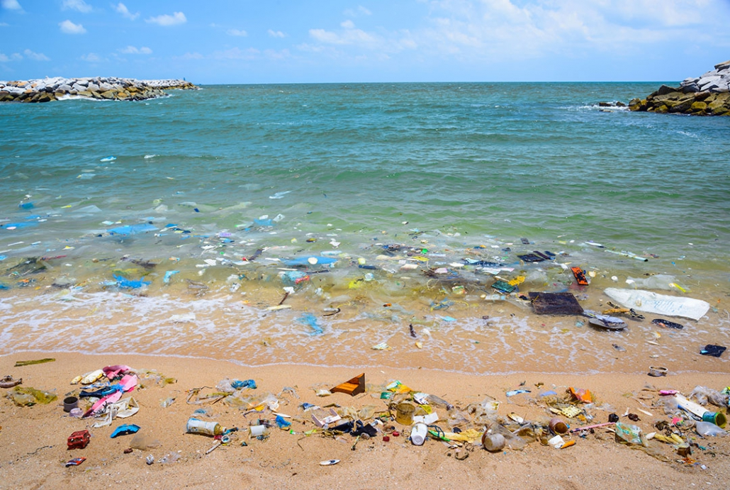 The problem of marine plastic pollution could be tackled if we used biodegradable hemp instead of fossil fuels to make plastic.