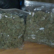 South Yorkshire Police weed bust.