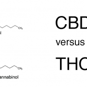 Pic of CBD and THC molecular structure with the caption CBD versus THC.
