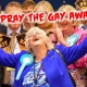 Ann Widdecombe: pray the gay away