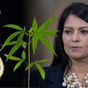 Hangman's noose with Priti Patel MP and a cannabis plant.