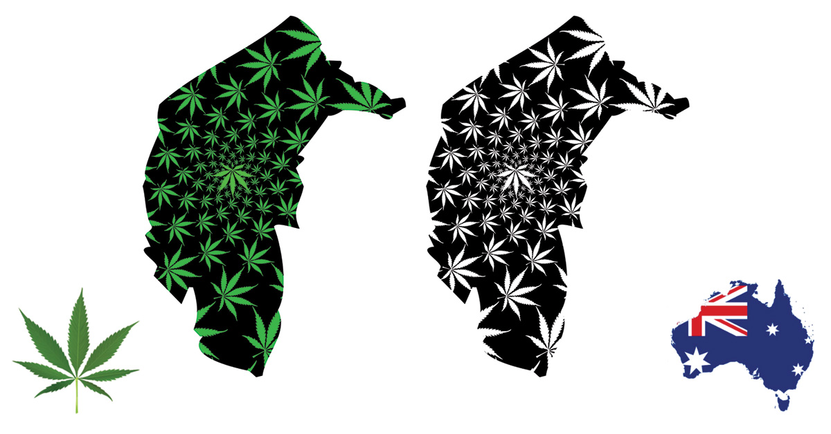 Graphic of map of the Australian Capital Territory Canberra with marijuana leaves imposed on the background.
