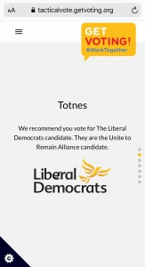Tactical voting website recommends voting Lib Dem in Totnes.