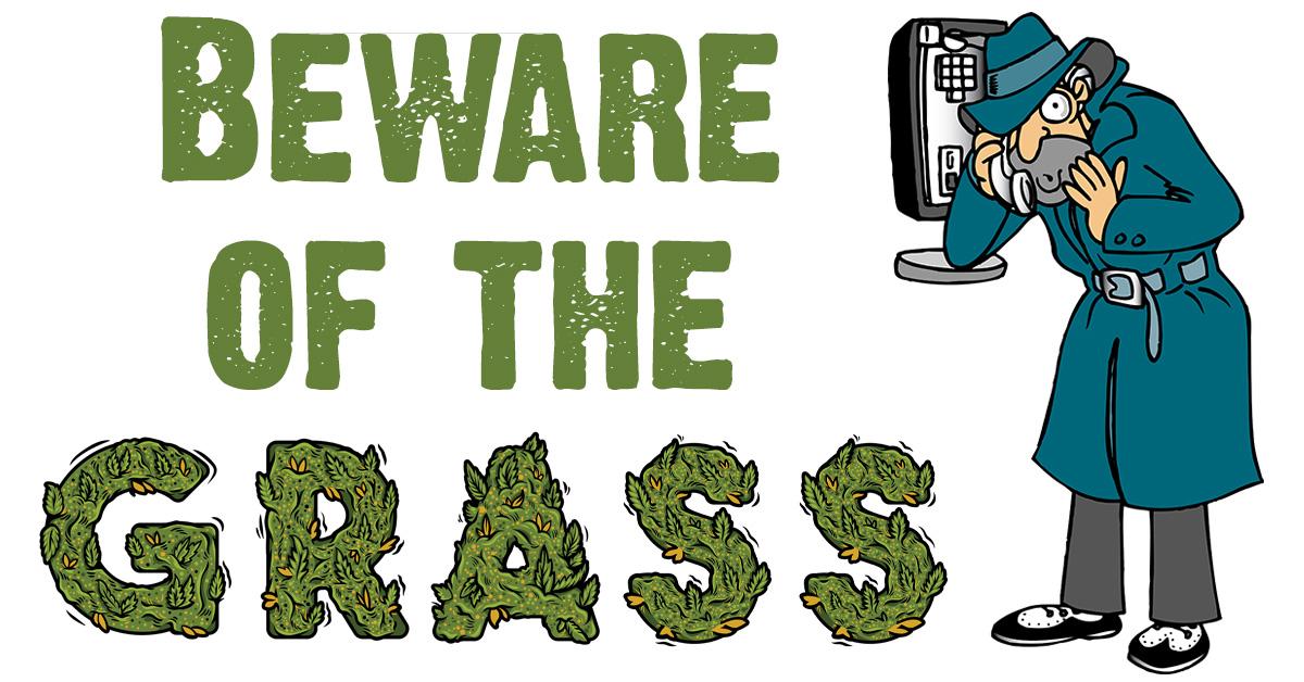 Beware of the grass.