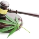Photo of a judge's gavel with a cannabis leaf